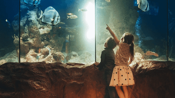 The World's Coolest Museums for Kids
